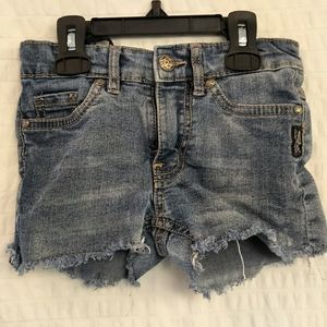Silver 5 Pocket 'Lacy' Jean Shorts